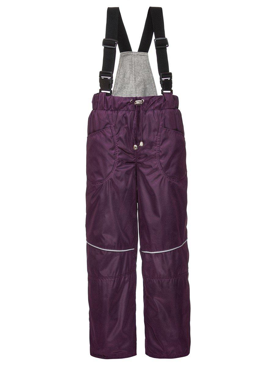 Брюки со спинкой из плащевой ткани на подкладке из хлопка (унисекс), цвет: фиолетовый