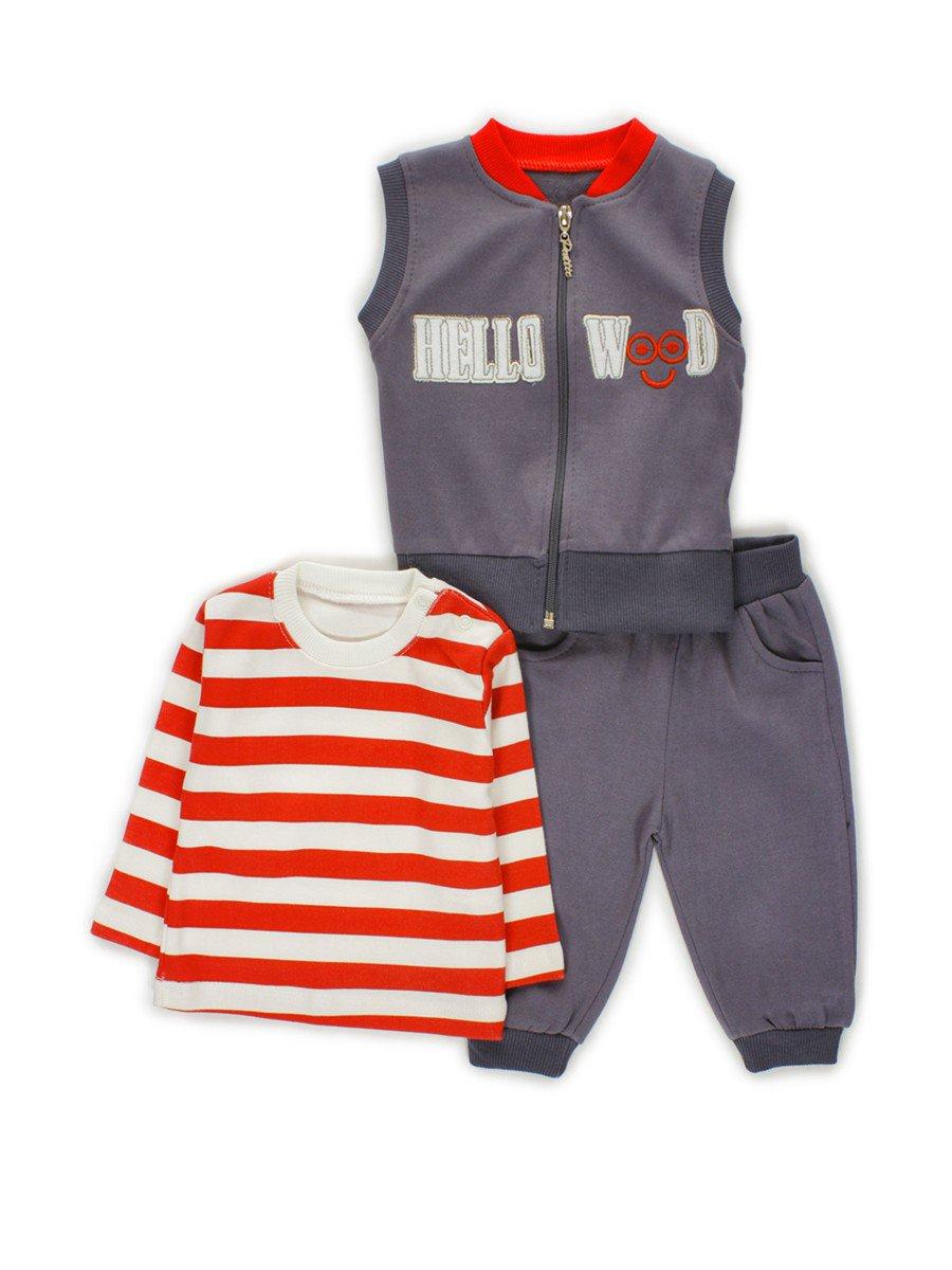 Комплект для мальчика: кофточка, штанишки и жилет, цвет: серый