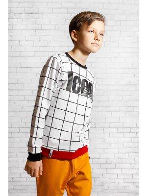 Свитшот (джемпер) для мальчика из футера 2-х нитка