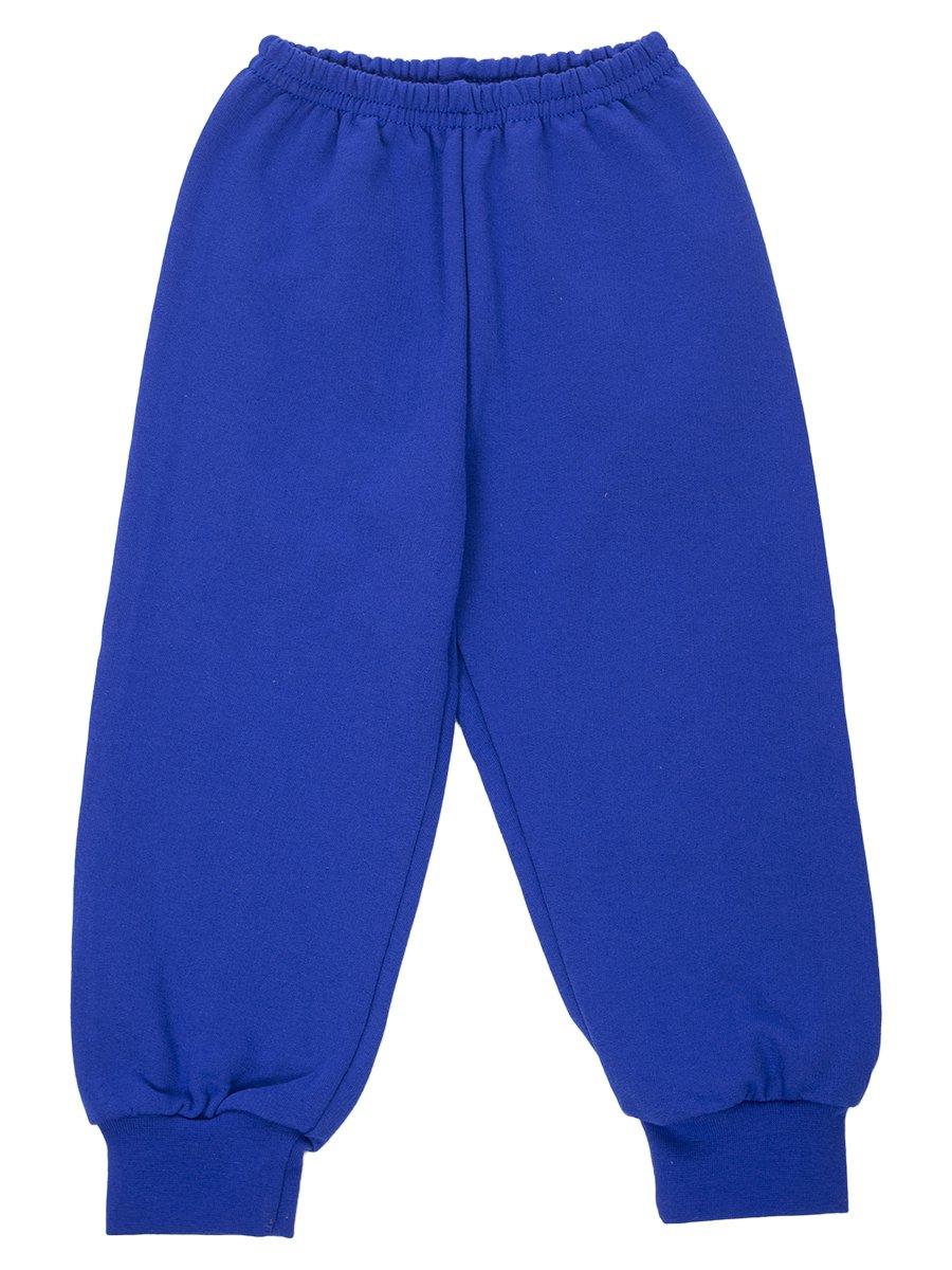 Брюки спортивные с начесом для мальчика, цвет: синий
