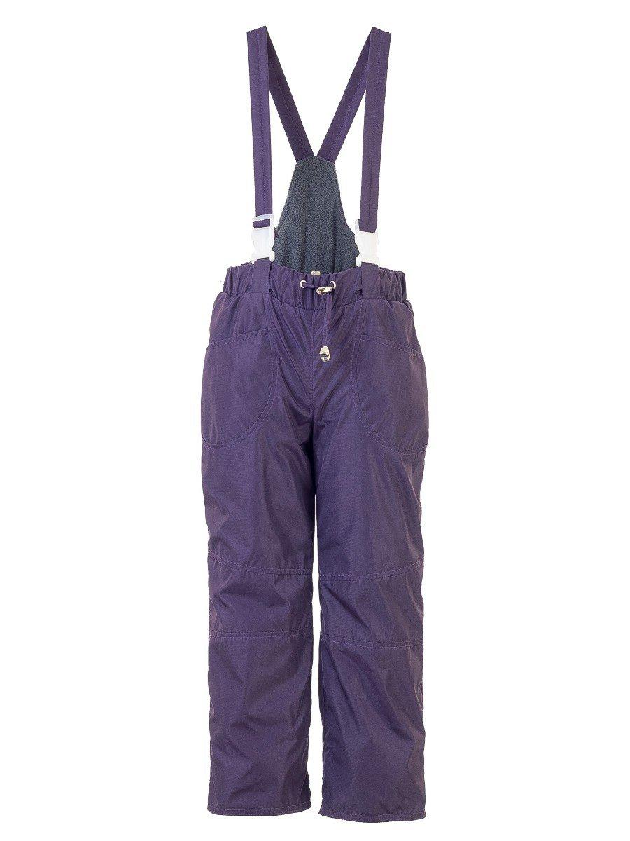 Брюки со спинкой из плащевой ткани на подкладке из флиса (унисекс), цвет: фиолетовый
