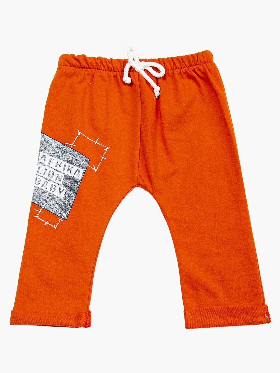 Комплект для мальчика: кофточка, штанишки и толстовка, цвет: кирпичный