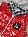 Комплект для мальчика: рубашка, штанишки и жилет на синтепоне, цвет: красный