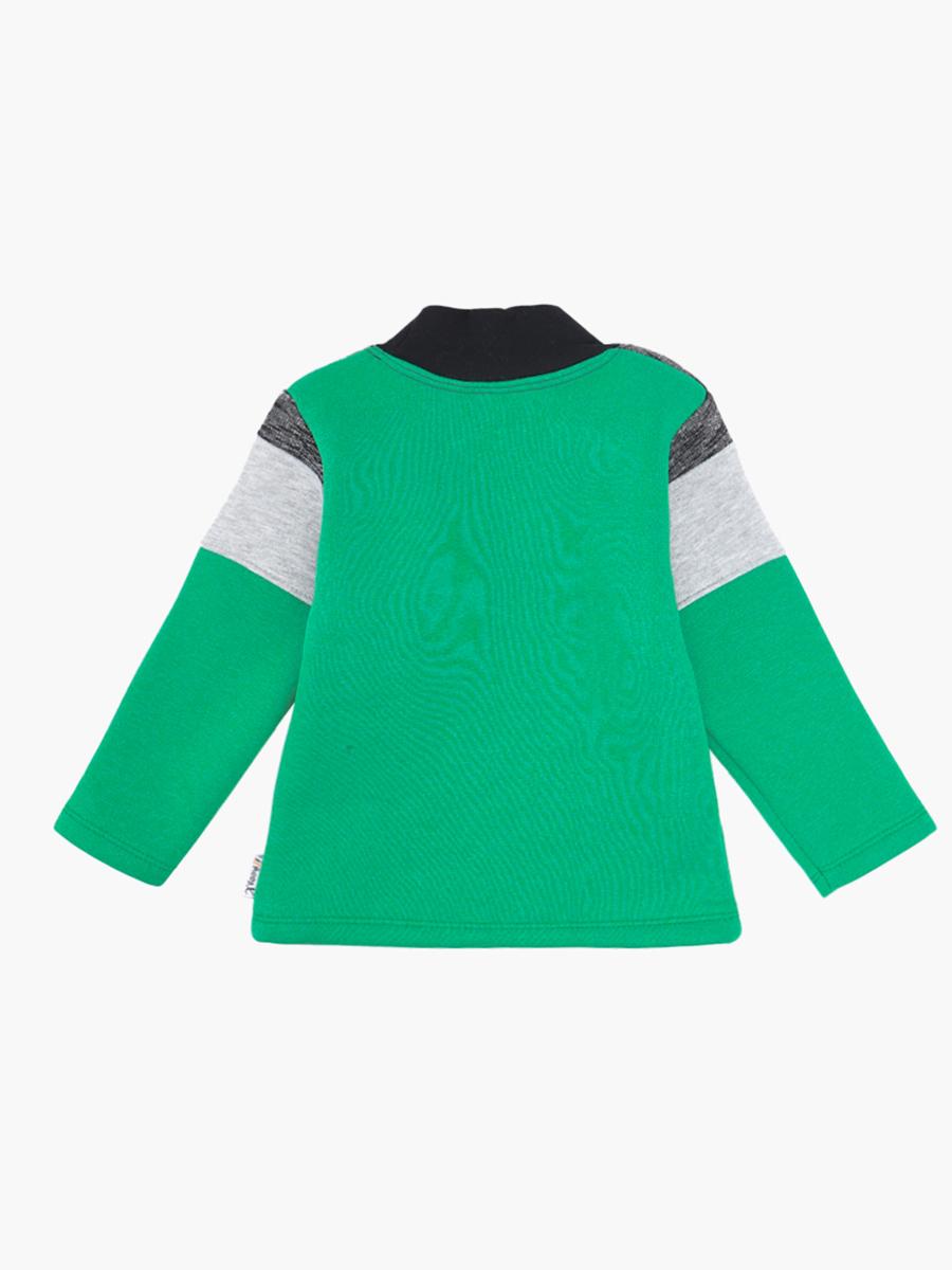 Водолазка с начесом для мальчика, цвет: зеленый