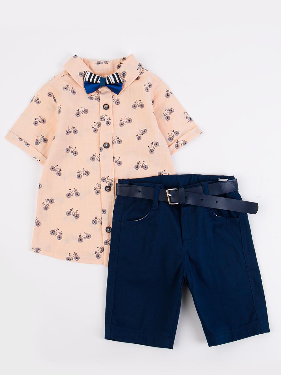 Комплект для мальчика: рубашка, бабочка и шорты с ремнем, цвет: пудра